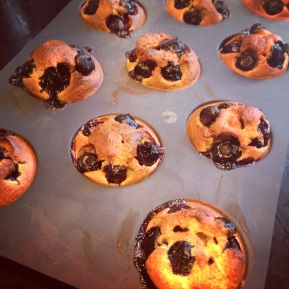 muffins blueberry